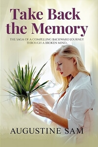 Meet Paige Lyman from Take Back the Memory by Augustine Sam @austin_sam001 #RLFblog #WomensFiction