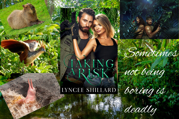 Pick up cool tips from Lyncee Shillard author of Taking A Risk by @lyncee #RLFblog #Romance #Adventure