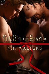 The Gift of Sheila by NJ Walters #ChristmasRomance #Read