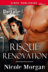 Risque Renovation by Nicole Morgan @authornicmorgan #Romance #RLFblog