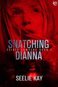 Read the thriller, Snatching Dianna by Seelie Kay @SeelieKay #RLFblog #romanticsuspense #lawyers #law