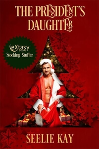 The President's Daughter by Seelie Kay #ChristmasRomance #Read