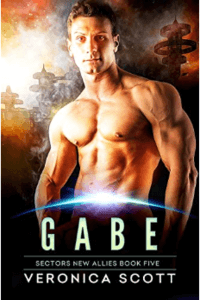 Know the Hero from Gabe by Veronica Scott @vscotttheauthor #RLFblog #scifi romance
